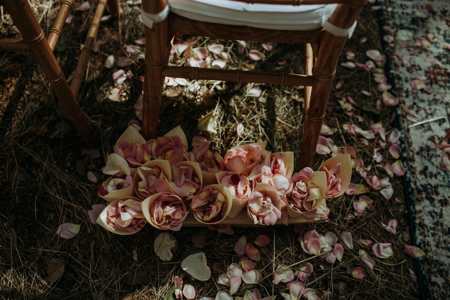 Byron Bay Wedding - Ceremony Details - flower petals